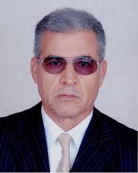 د. محمد العمري